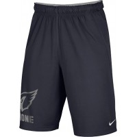 Ione 34: Adult-Size - Nike Team Fly Athletic Shorts - Anthracite Gray