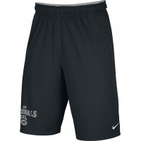 Ione 36: Adult-Size - Nike Team Fly Athletic Shorts - Black