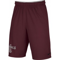 Ione 38: Adult-Size - Nike Team Fly Athletic Shorts - Cardinal